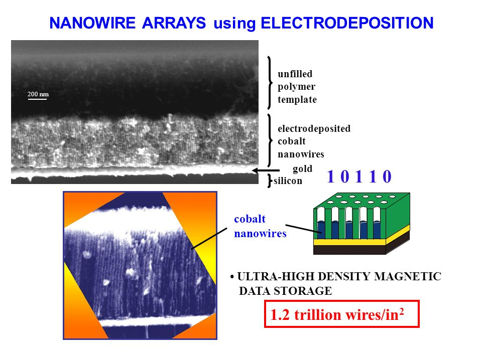 NANOWIRE ARRAYS using ELECTRODEPOSITION 1.2 trillion wires/in 2 200 nm 20 nm 100 nm silicon gold electrodeposited cobalt nanowires unfilled polymer template cobalt nanowires ULTRA-HIGH DENSITY MAGNETIC DATA STORAGE 1 0 1 1 0