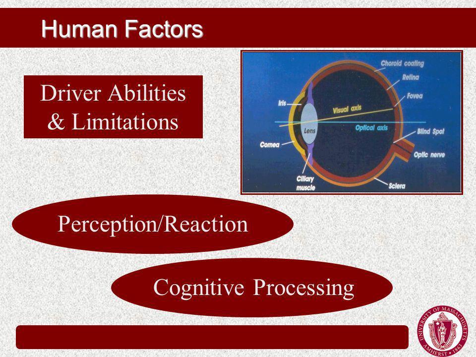 Human Factors Driver Abilities & Limitations Perception/Reaction Cognitive Processing
