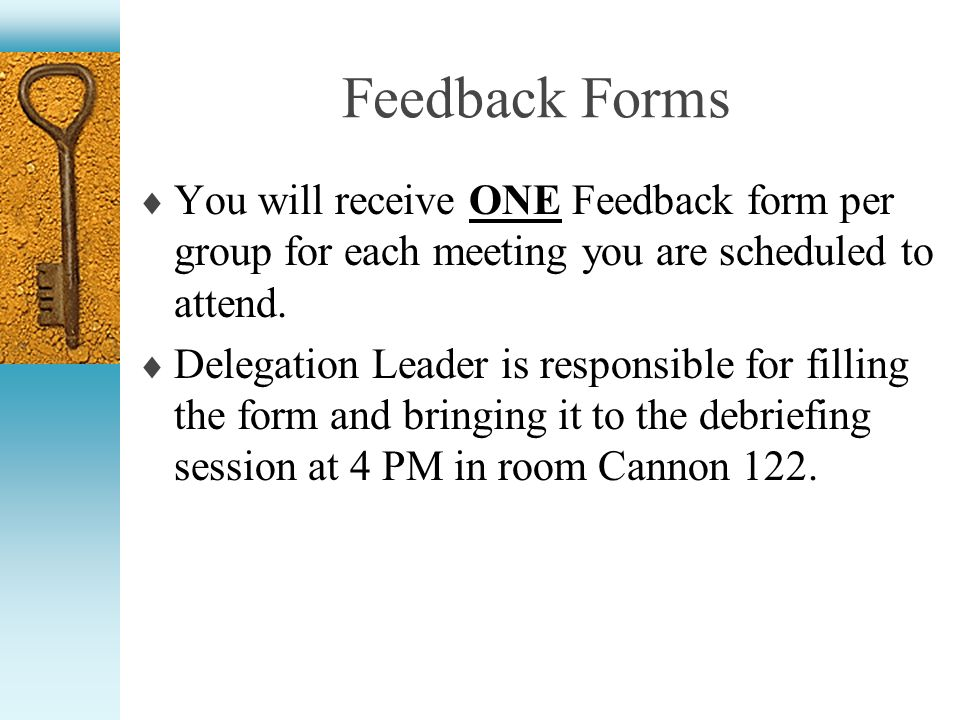 Feedback Forms You will receive ONE Feedback form per group for each meeting you are scheduled to attend. Delegation Leader is responsible for filling