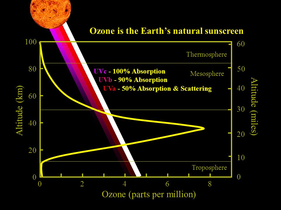 11 UVc - 100% Absorption UVb - 90% Absorption UVa - 50% Absorption & Scattering Ozone is the Earths natural sunscreen Ozone (parts per million) 0 20 4