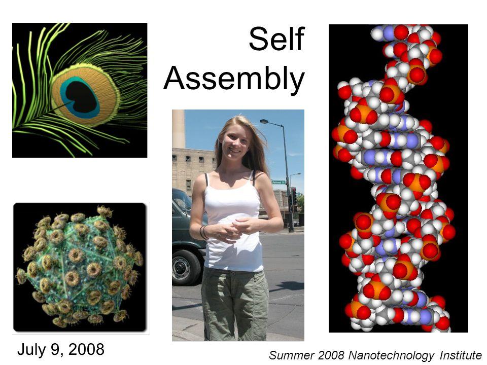 Self Assembly July 9, 2008 Summer 2008 Nanotechnology Institute