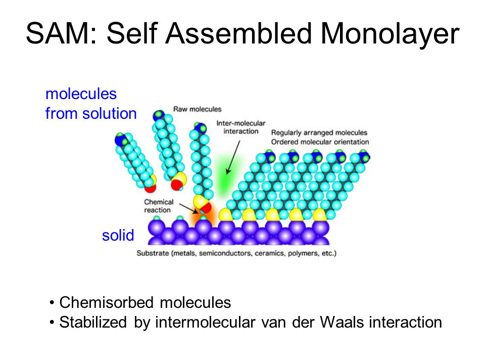 SAM: Self Assembled Monolayer Chemisorbed molecules Stabilized by intermolecular van der Waals interaction solid molecules from solution