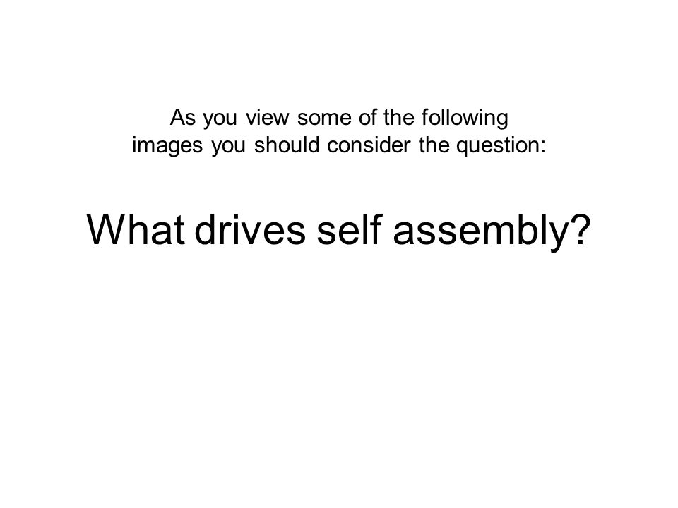 What drives self assembly? As you view some of the following images you should consider the question:
