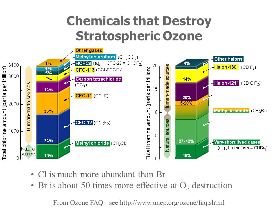 Chemicals that Destroy Stratospheric Ozone Cl is much more abundant than Br Br is about 50 times more effective at O 3 destruction From Ozone FAQ - se