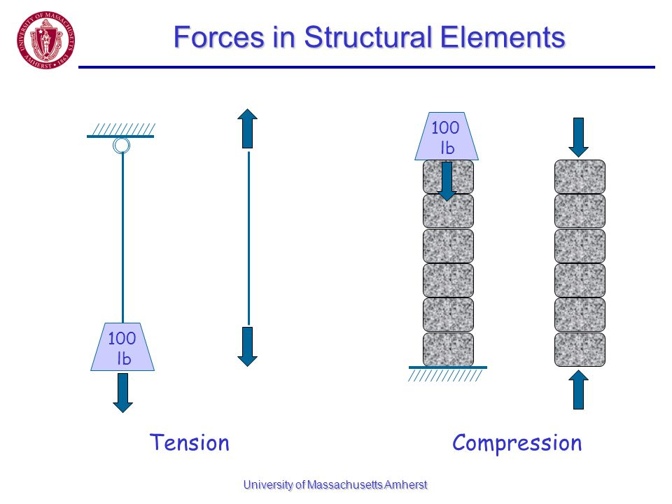 University of Massachusetts Amherst Forces in Structural Elements 100 lb Compression 100 lb Tension