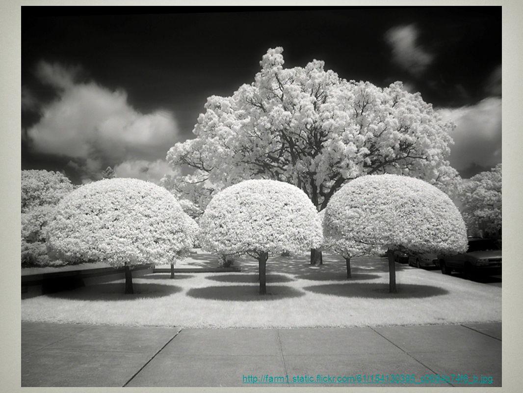 http://farm1.static.flickr.com/61/154130385_c0694b74f6_b.jpg