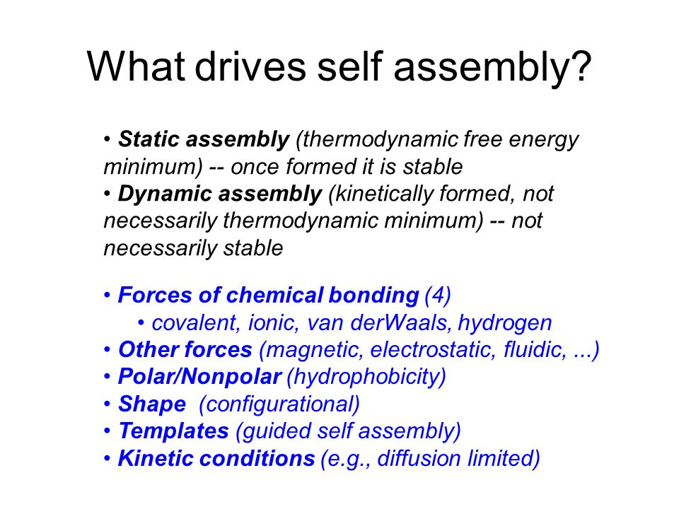 What drives self assembly? Static assembly (thermodynamic free energy minimum) -- once formed it is stable Dynamic assembly (kinetically formed, not n