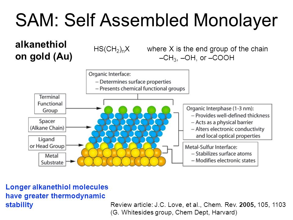 SAM: Self Assembled Monolayer Review article: J.C. Love, et al., Chem. Rev. 2005, 105, 1103 (G. Whitesides group, Chem Dept, Harvard) HS(CH 2 ) n X al