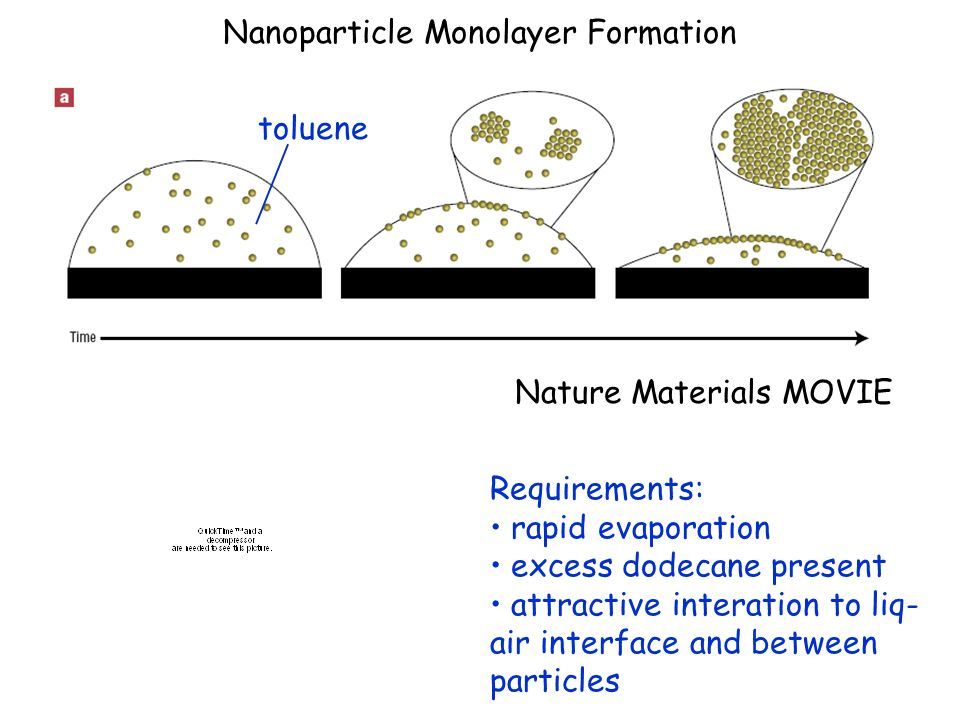 Nanoparticle Monolayer Formation Nature Materials MOVIE toluene Requirements: rapid evaporation excess dodecane present attractive interation to liq-
