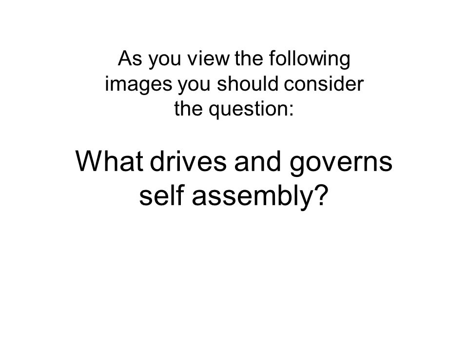 What drives and governs self assembly? As you view the following images you should consider the question: