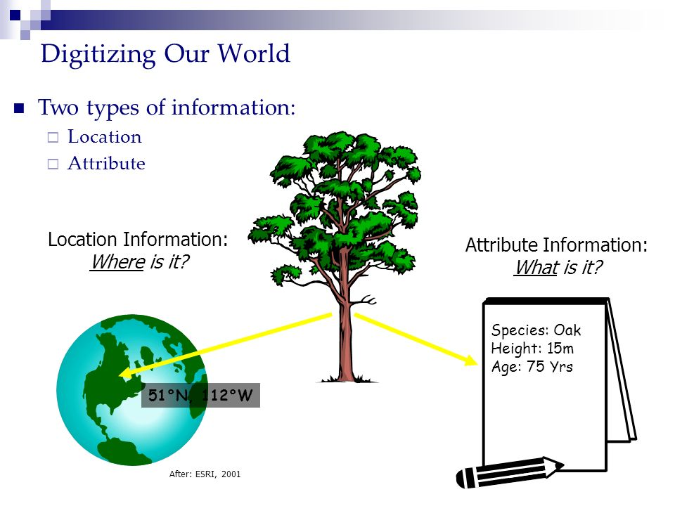 Digitizing Our World Two types of information: Location Attribute Attribute Information: What is it? Species: Oak Height: 15m Age: 75 Yrs Location Inf