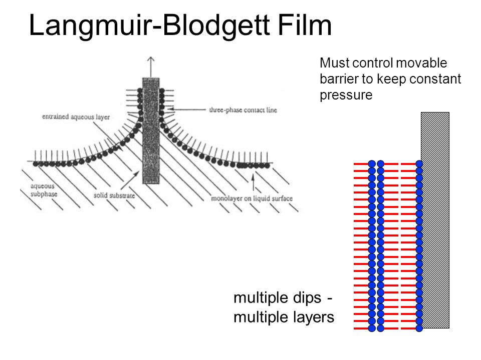 A monolayer NANOFILM (single layer of molecules) ~1 nm thick Langmuir film An example of a FILM This is an example of SELF-ASSEMBLY
