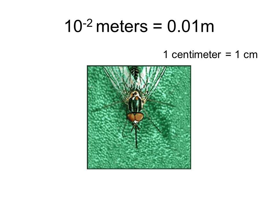 10 -2 meters = 0.01m 1 centimeter = 1 cm