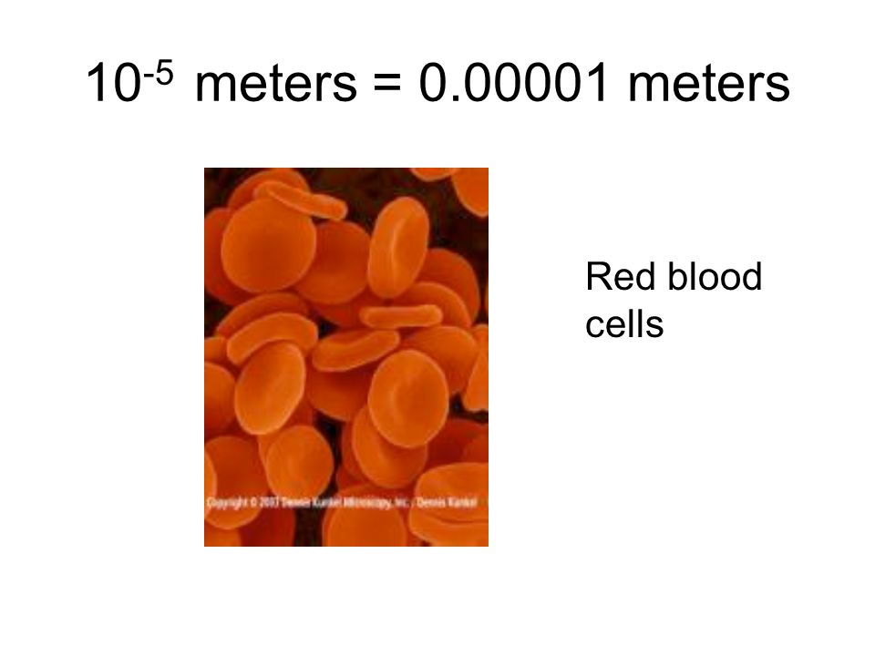 10 -5 meters = 0.00001 meters Red blood cells