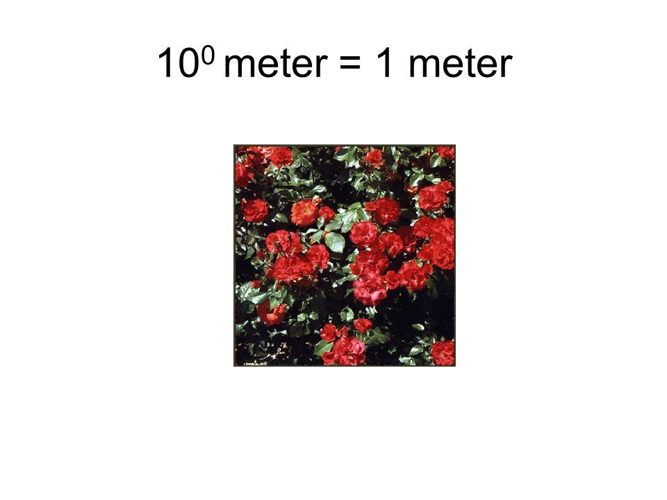 10 0 meter = 1 meter