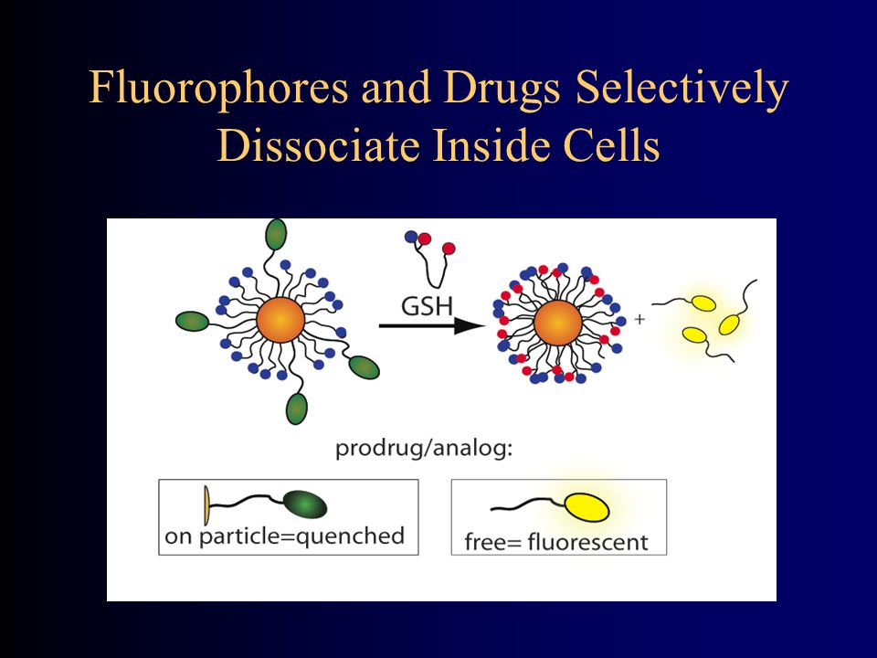 Fluorophores and Drugs Selectively Dissociate Inside Cells