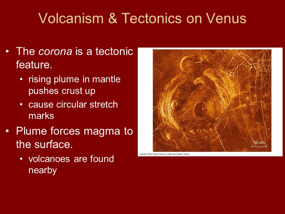 Volcanism & Tectonics on Venus The corona is a tectonic feature.