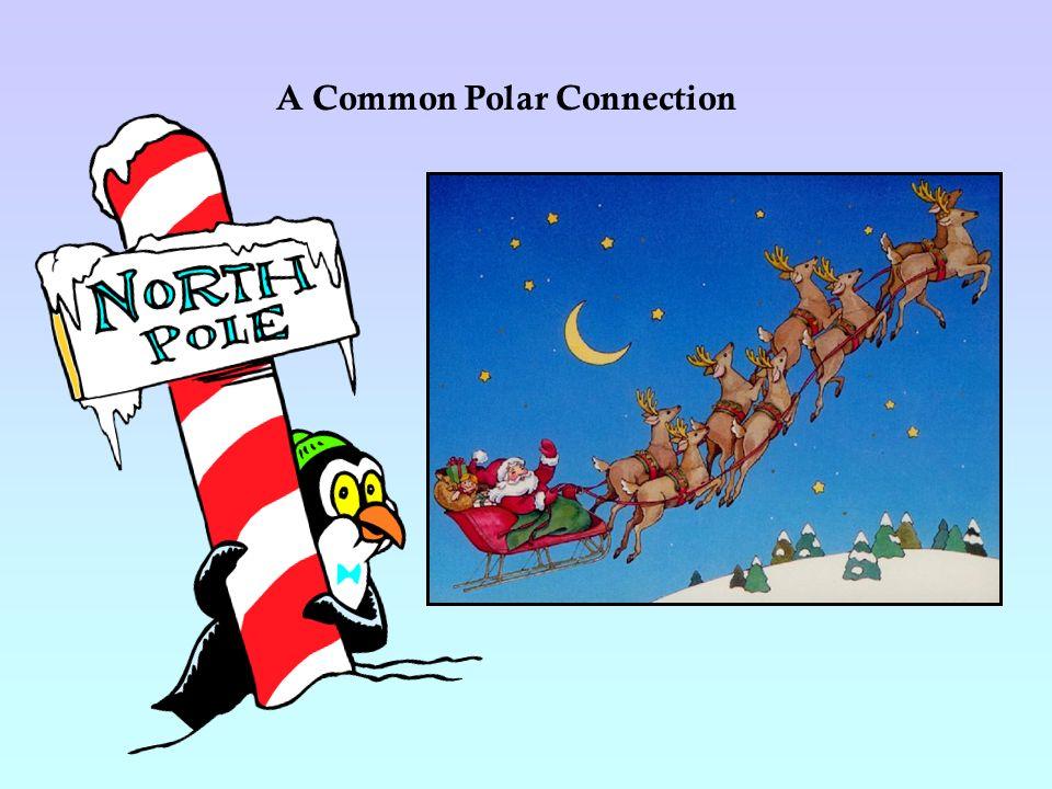 A Common Polar Connection