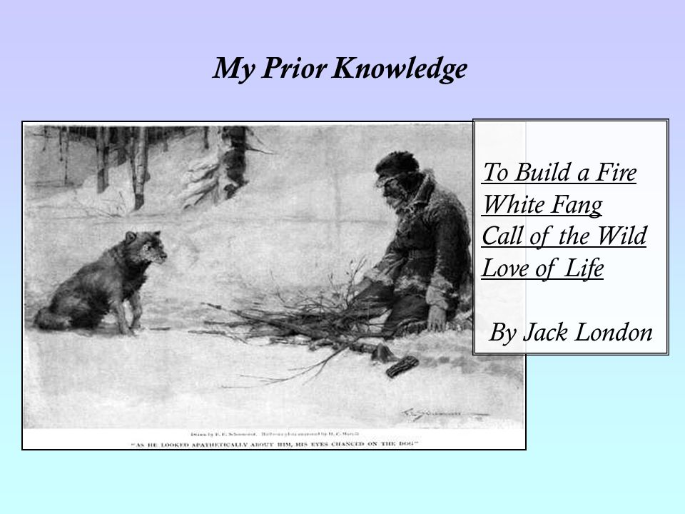 My Prior Knowledge To Build a Fire White Fang Call of the Wild Love of Life By Jack London