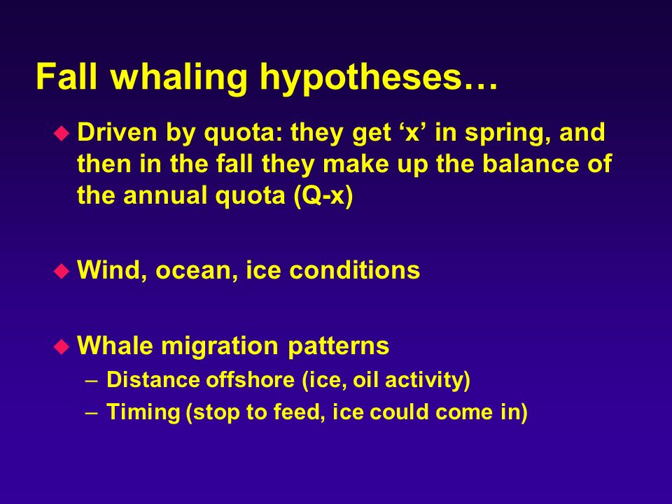 Fall whaling hypotheses… u Driven by quota: they get x in spring, and then in the fall they make up the balance of the annual quota (Q-x) u Wind, ocean, ice conditions u Whale migration patterns –Distance offshore (ice, oil activity) –Timing (stop to feed, ice could come in)