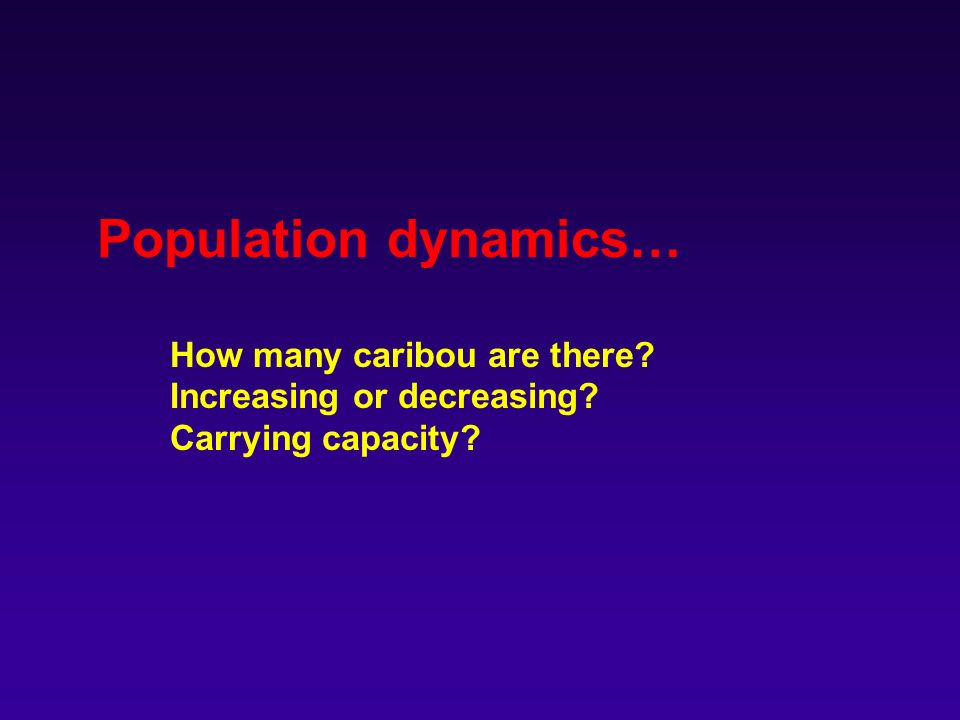 Population dynamics… How many caribou are there Increasing or decreasing Carrying capacity