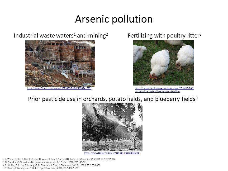 Arsenic pollution Industrial waste waters 1 and mining 2 Fertilizing with poultry litter 3 Prior pesticide use in orchards, potato fields, and blueberry fields 4 1.