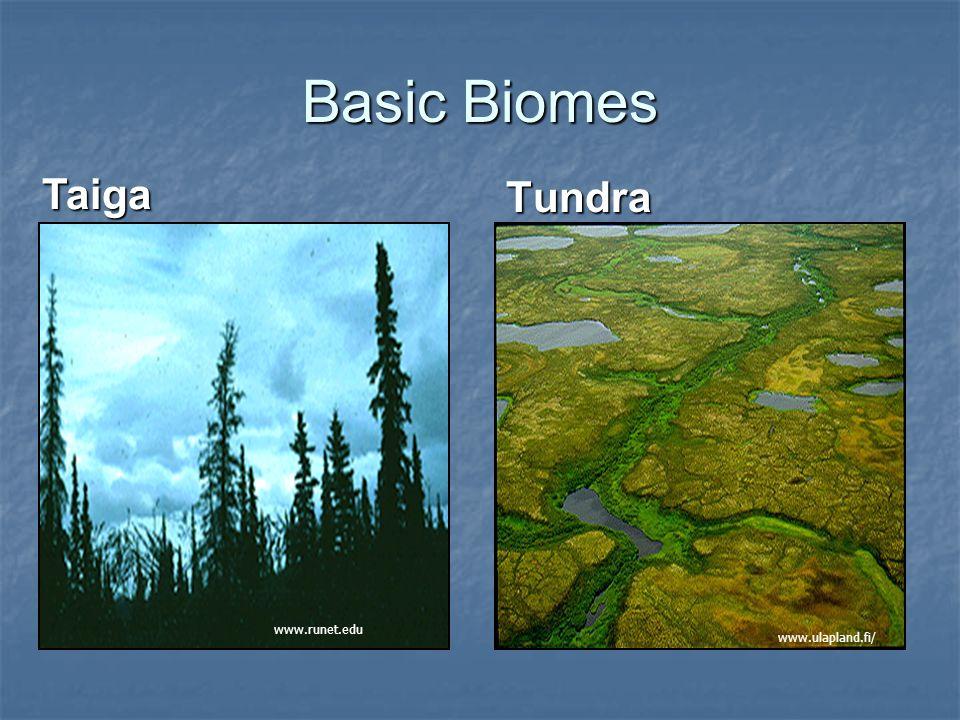 Tundra Tundra, from Finnish word tunturi, meaning treeless plain Tundra, from Finnish word tunturi, meaning treeless plain Extremely cold climate Extremely cold climate Winter -60 F (-51 C) Winter -60 F (-51 C) Summer 32 F (0 C) to 50 F (10 C) Summer 32 F (0 C) to 50 F (10 C) > 55 days per year with a mean temperature higher than 32 F (0 C).
