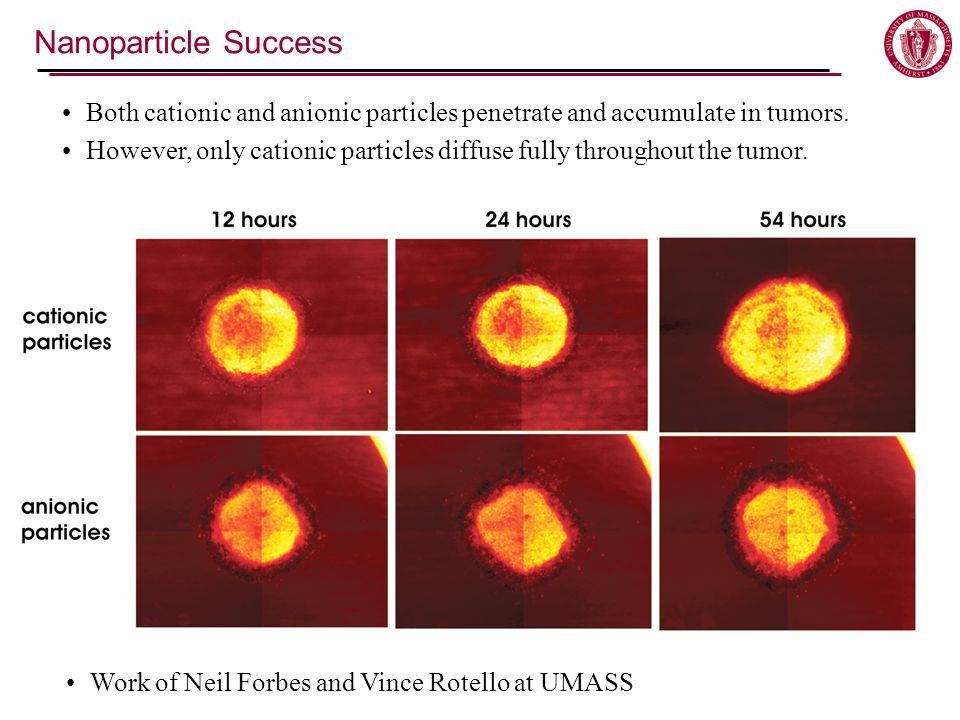 Nanoparticle Success Both cationic and anionic particles penetrate and accumulate in tumors.