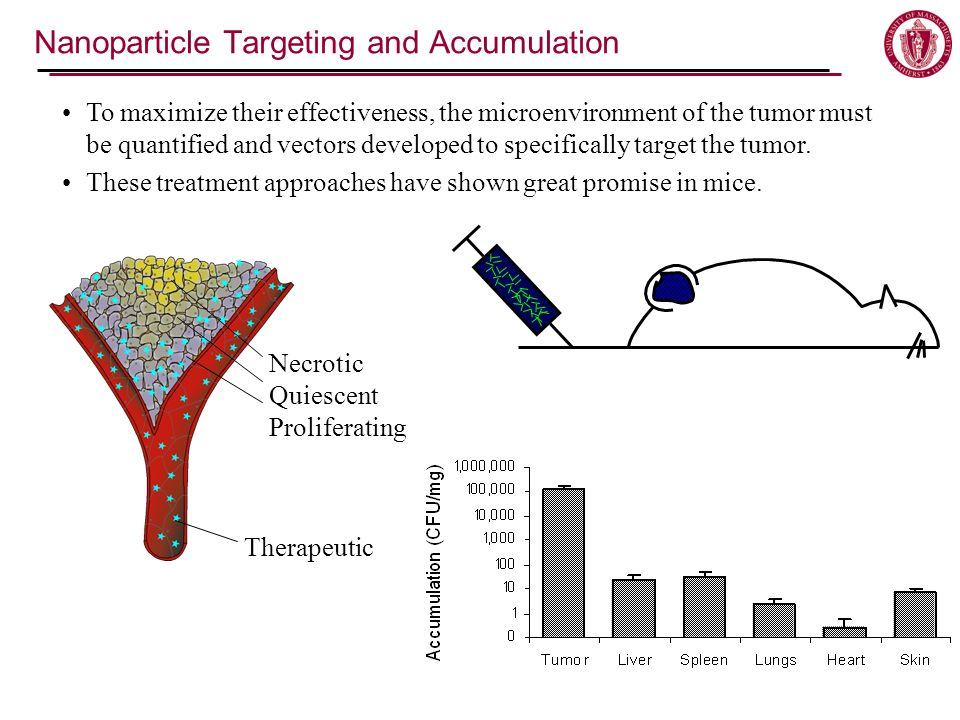 Nanoparticle Targeting and Accumulation To maximize their effectiveness, the microenvironment of the tumor must be quantified and vectors developed to