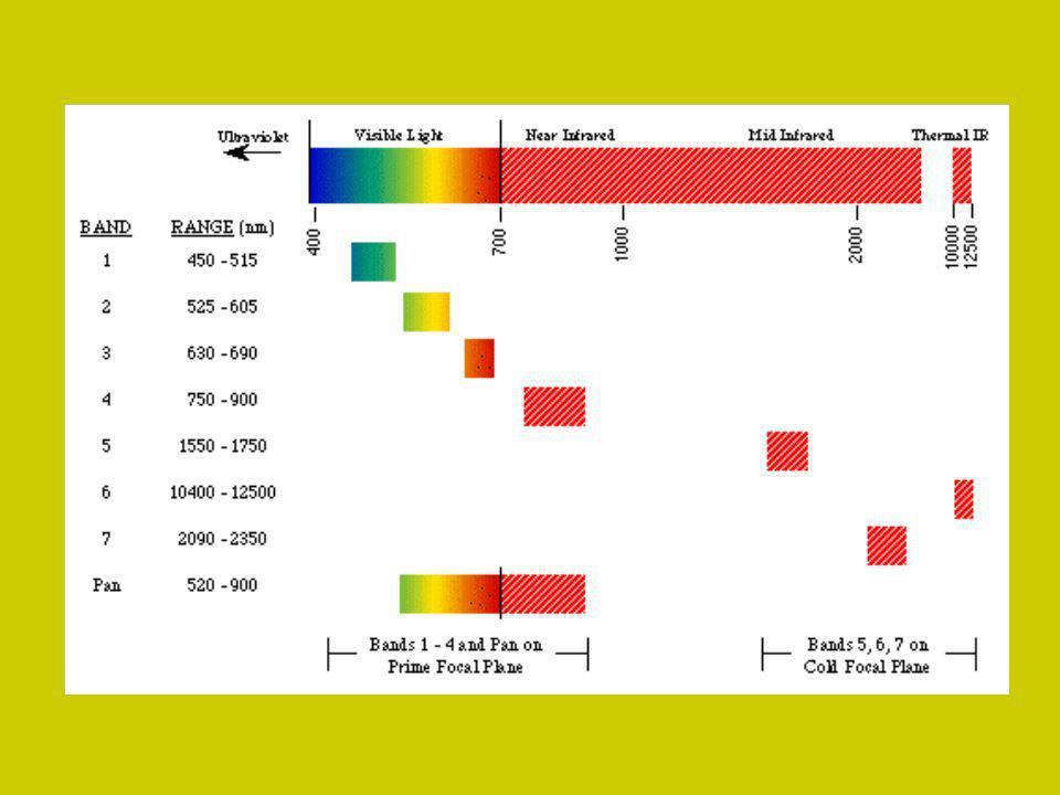 Chlorophyll Absorption http://www.chm.bris.ac.uk/motm/chlorophyll/chlorophyll_h.htm