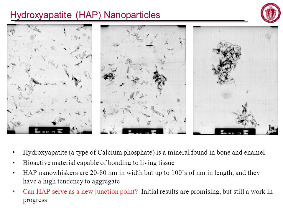 Hydroxyapatite (HAP) Nanoparticles Hydroxyapatite (a type of Calcium phosphate) is a mineral found in bone and enamel Bioactive material capable of bonding to living tissue HAP nanowhiskers are 20-80 nm in width but up to 100s of nm in length, and they have a high tendency to aggregate Can HAP serve as a new junction point.
