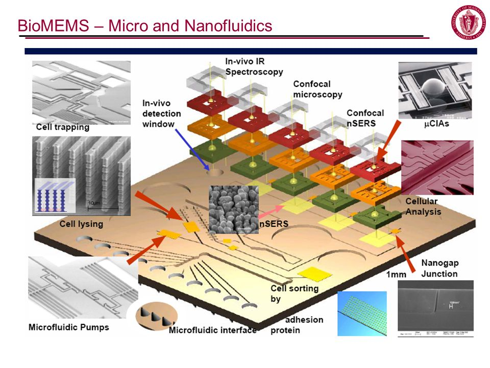 BioMEMS – Micro and Nanofluidics