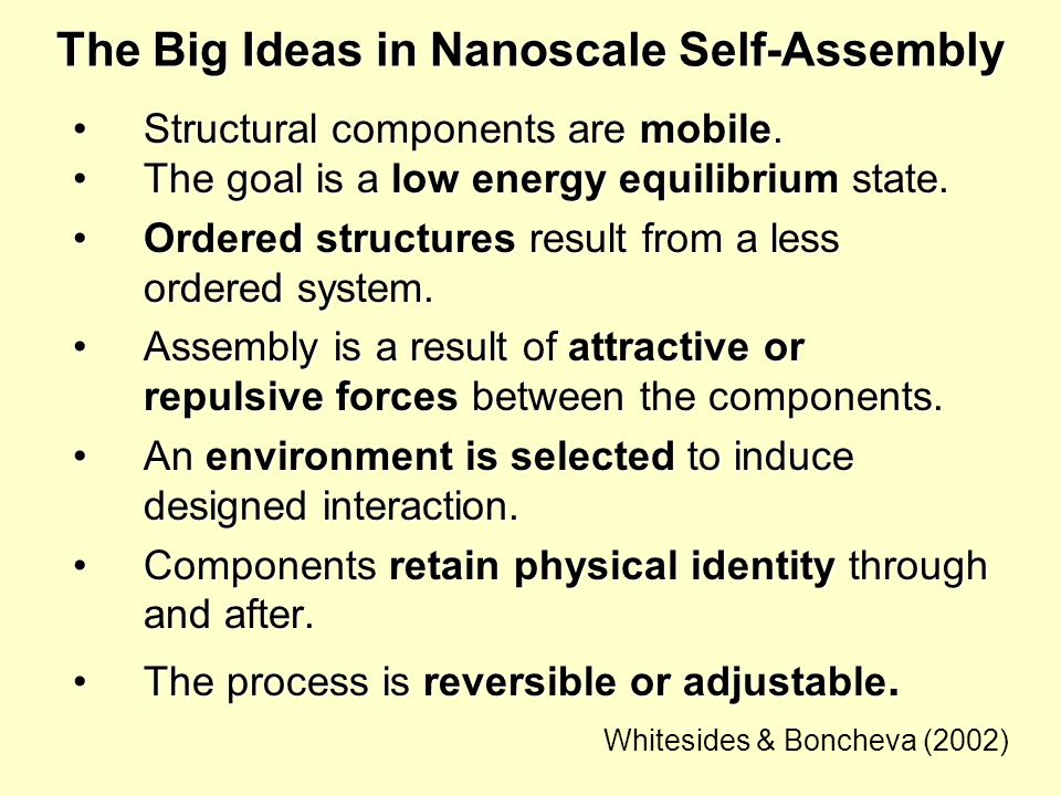 The Big Ideas in Nanoscale Self-Assembly Structural components are mobile.Structural components are mobile. The goal is a low energy equilibrium state