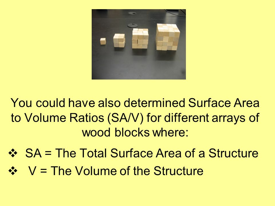 You could have also determined Surface Area to Volume Ratios (SA/V) for different arrays of wood blocks where: SA = The Total Surface Area of a Struct