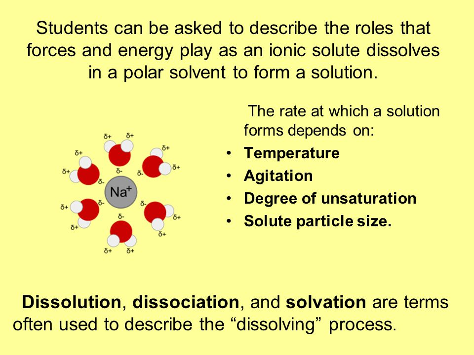 Students can be asked to describe the roles that forces and energy play as an ionic solute dissolves in a polar solvent to form a solution. The rate a