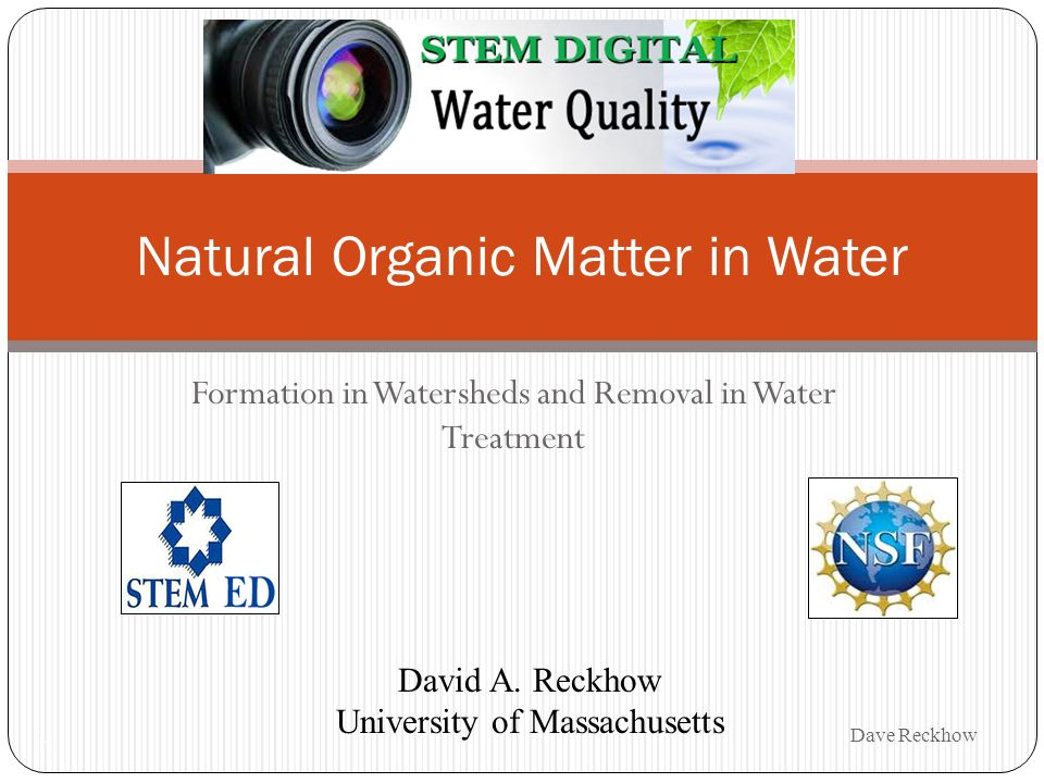 Formation in Watersheds and Removal in Water Treatment 1 Natural Organic Matter in Water David A. Reckhow University of Massachusetts Dave Reckhow