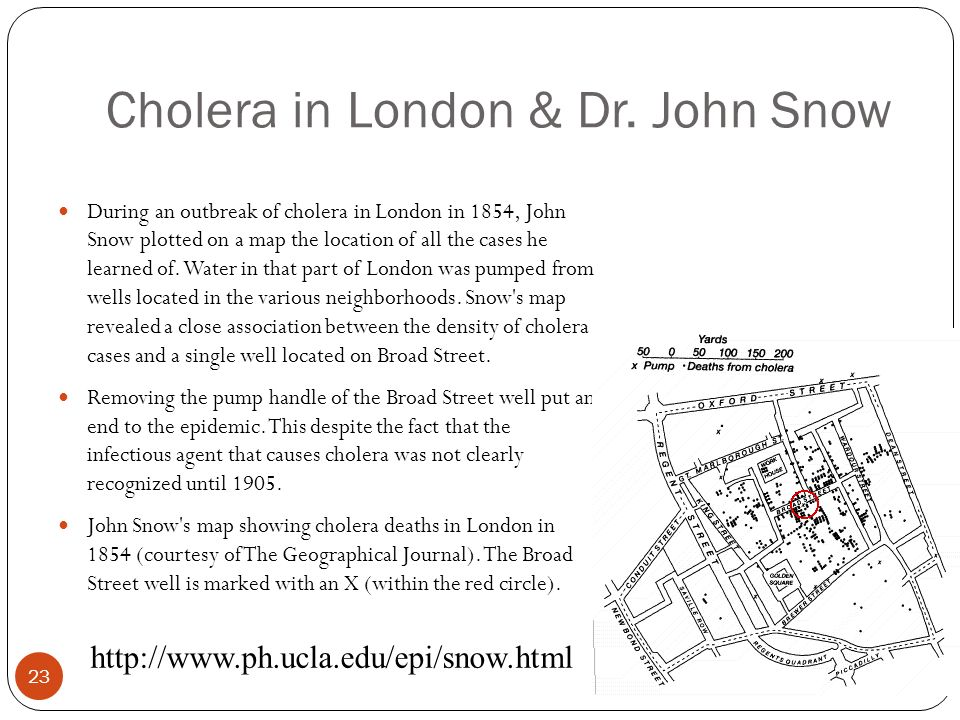 23 Cholera in London & Dr. John Snow During an outbreak of cholera in London in 1854, John Snow plotted on a map the location of all the cases he lear