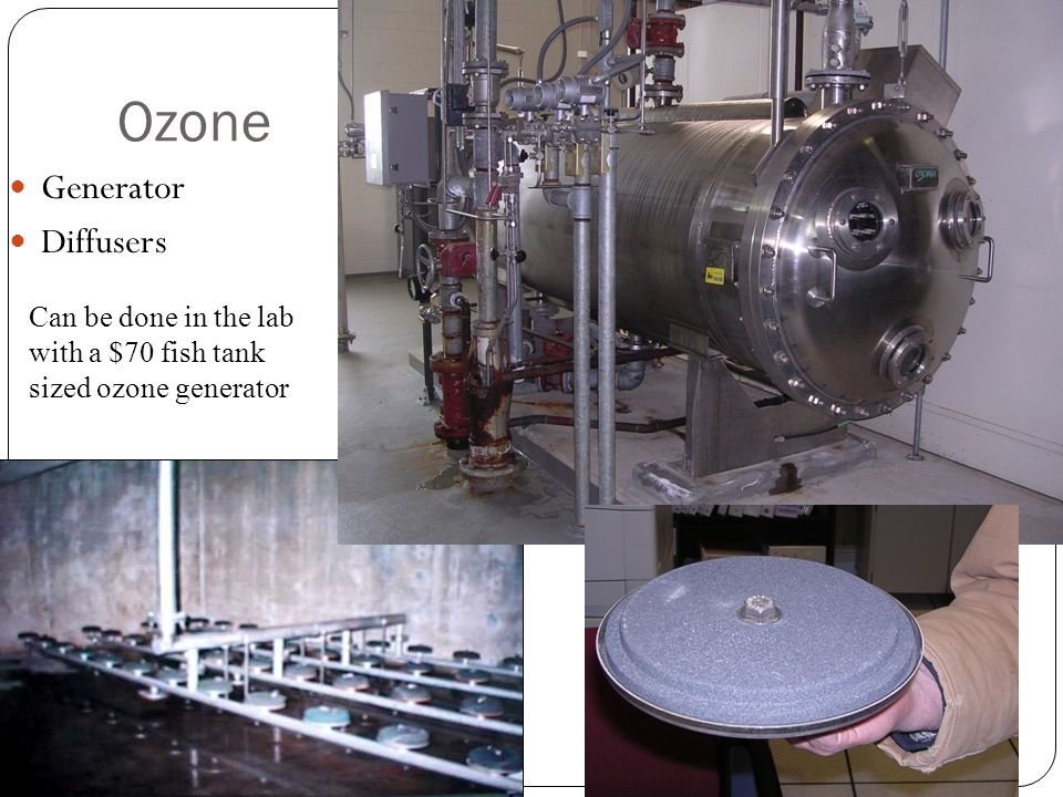 Ozone Generator Diffusers 35 Can be done in the lab with a $70 fish tank sized ozone generator