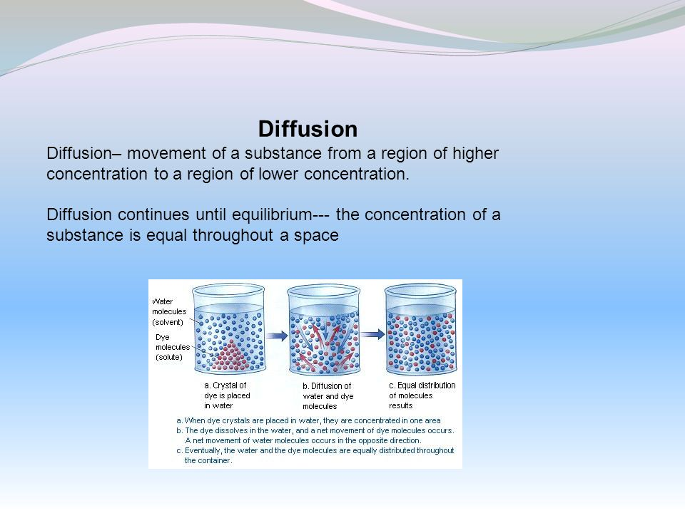 Diffusion Diffusion– movement of a substance from a region of higher concentration to a region of lower concentration. Diffusion continues until equil