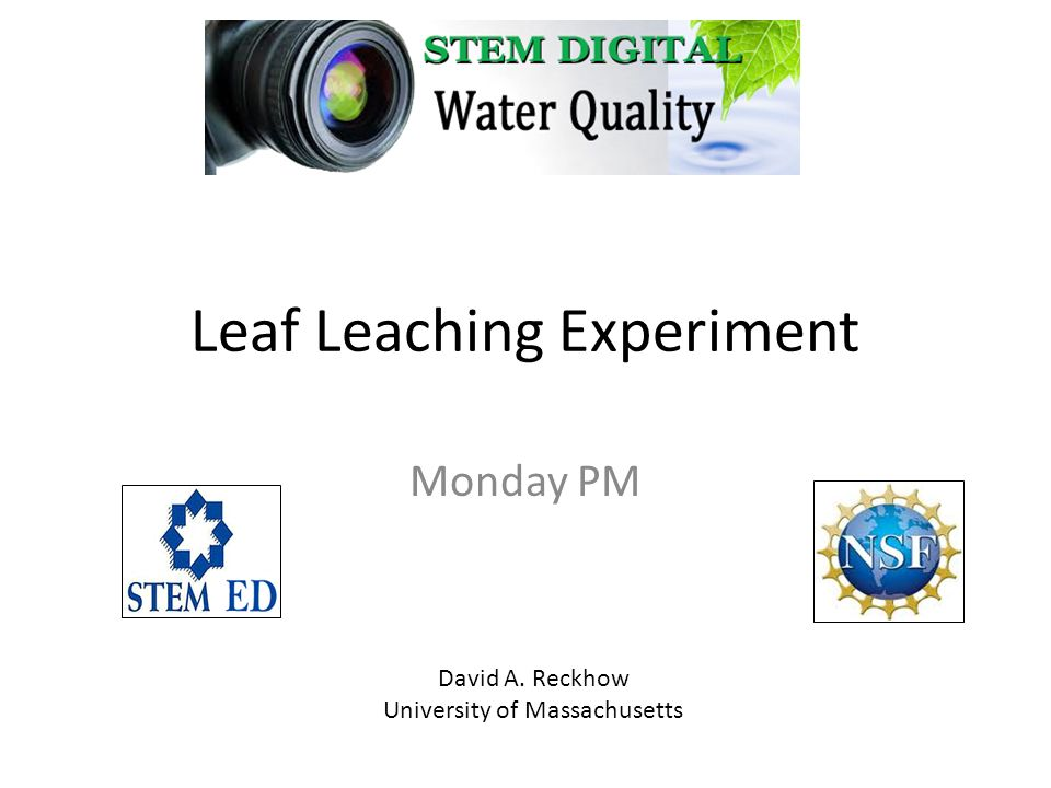 Leaf Leaching Experiment Monday PM David A. Reckhow University of Massachusetts