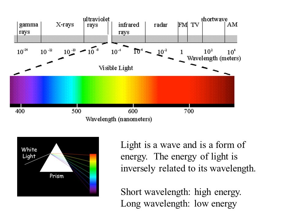 Summary of where we are now.Color of objects is due to the absorption of light.