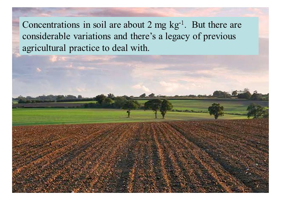 Concentrations in soil are about 2 mg kg -1. But there are considerable variations and theres a legacy of previous agricultural practice to deal with.