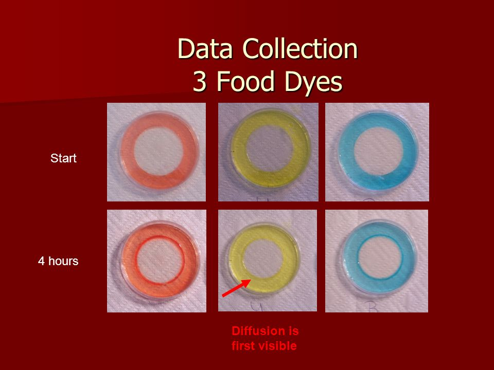 Data Collection 3 Food Dyes Start 4 hours Diffusion is first visible