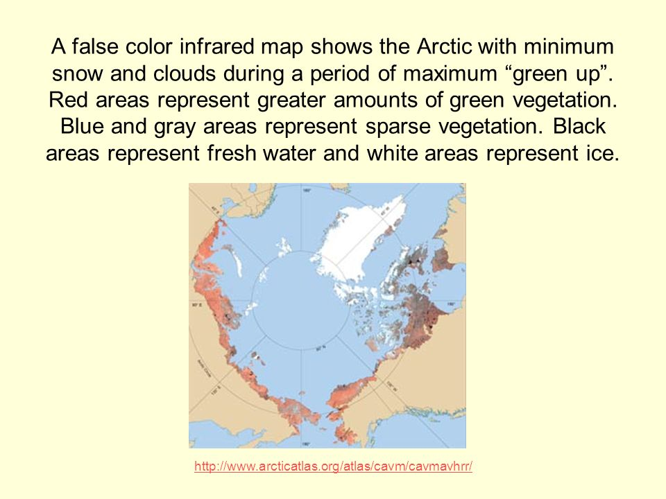 A false color infrared map shows the Arctic with minimum snow and clouds during a period of maximum green up.
