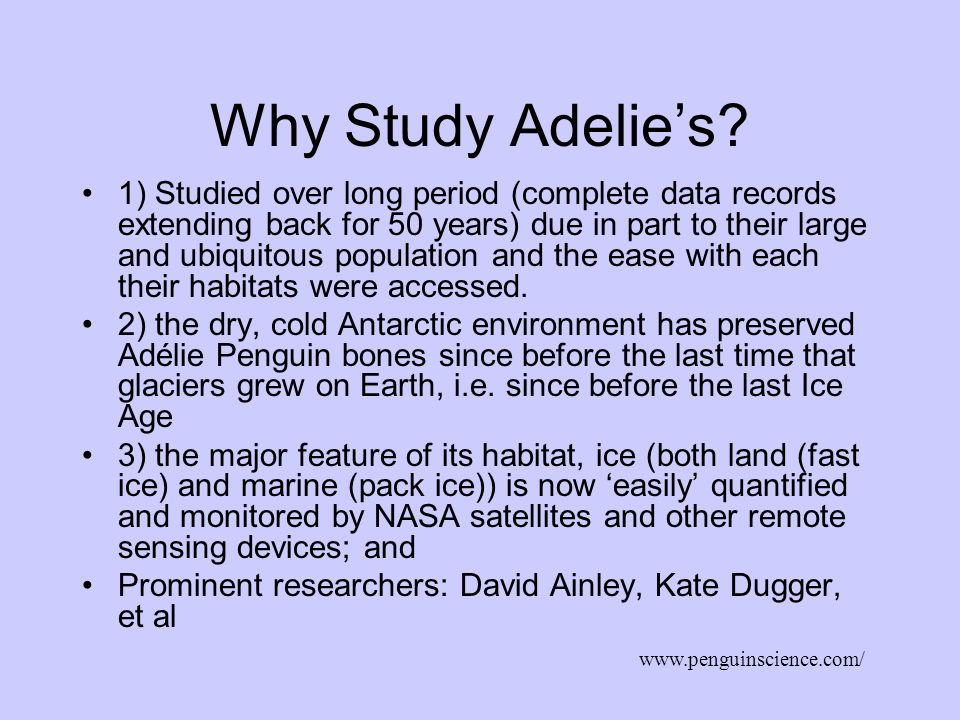 Why Study Adelies? 1) Studied over long period (complete data records extending back for 50 years) due in part to their large and ubiquitous populatio