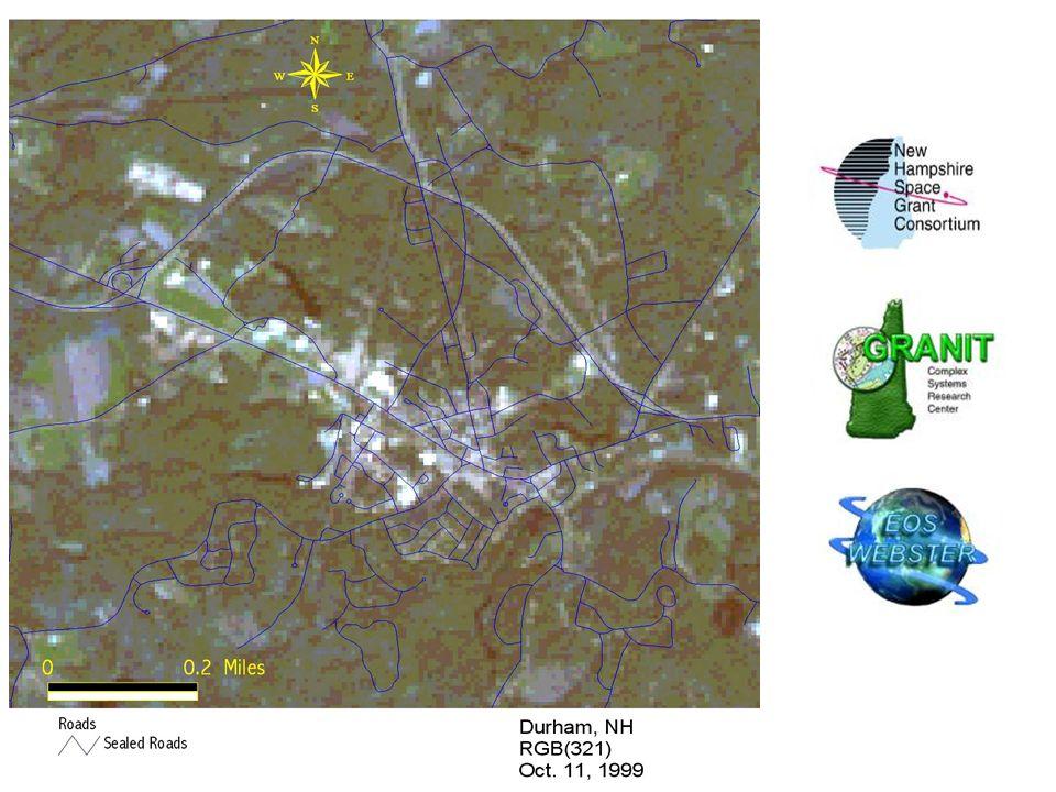 White Pine Spectral Curve & Landsat Band Regions TM1 (Blue) TM2 (Green) TM3 (Red) TM4 (NIR) TM5 (MIR) TM7 (MIR) Water Absorption Cellulose Red Edge NI