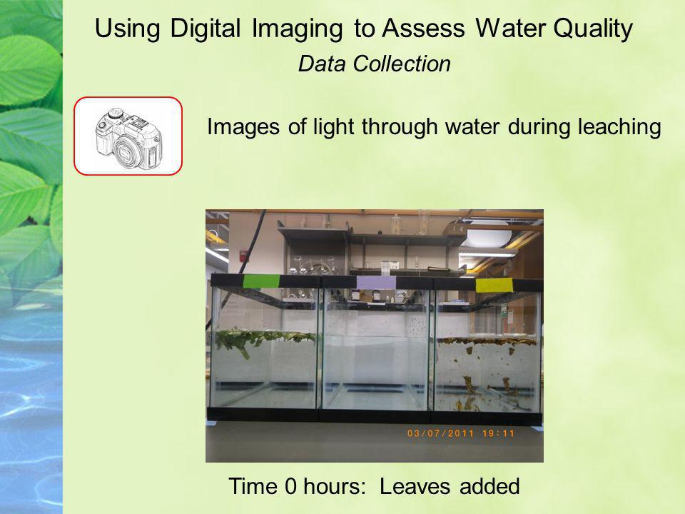 Using Digital Imaging to Assess Water Quality Images of light through water during leaching Time 0 hours: Leaves added Data Collection