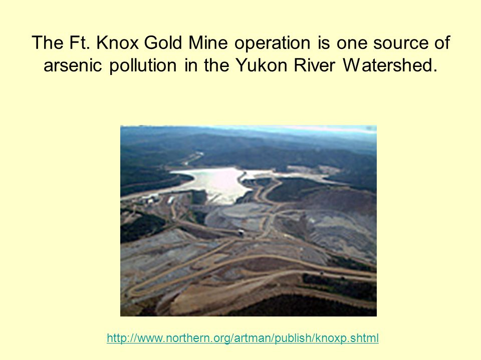The Ft. Knox Gold Mine operation is one source of arsenic pollution in the Yukon River Watershed.