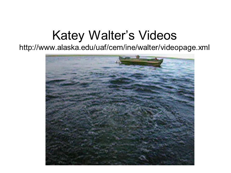 Katey Walters Videos http://www.alaska.edu/uaf/cem/ine/walter/videopage.xml