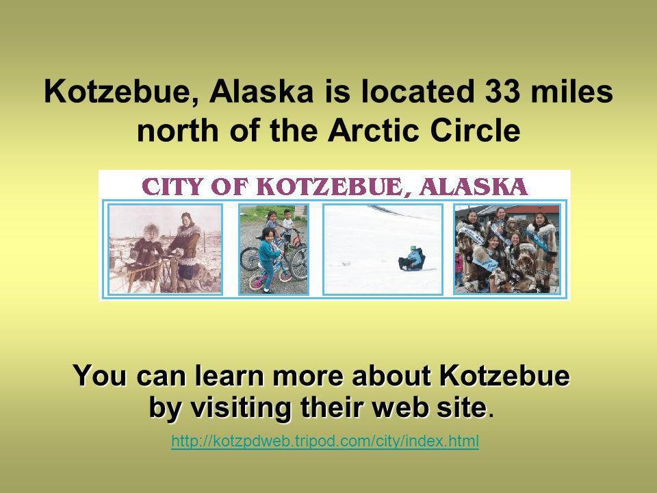 Kotzebue, Alaska is located 33 miles north of the Arctic Circle You can learn more about Kotzebue by visiting their web site You can learn more about Kotzebue by visiting their web site.